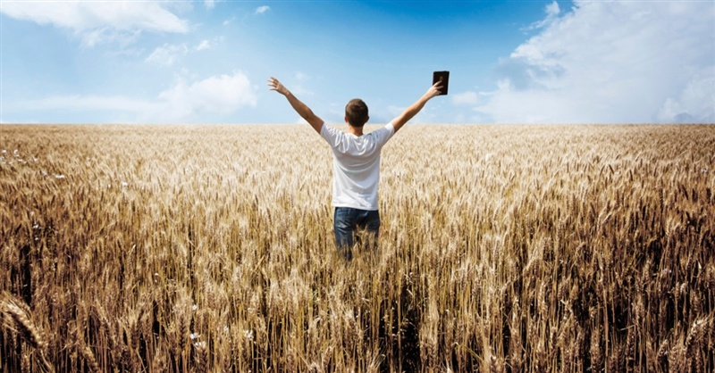 12849-man-bible-preach-field-wheat-sky-arms-800w-tn